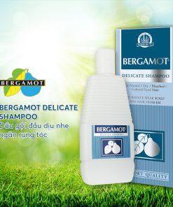 dau-goi-ngan-rung-toc-bergamot-delicate-thai-lan